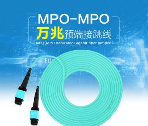 24 Cores MTP/MPO Fiber Optic Patch Cord pictures & photos