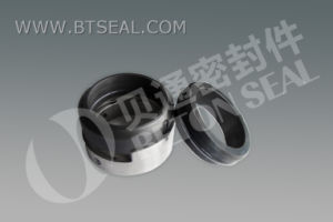 O Ring Single Mechanical Seal (BH7N) pictures & photos
