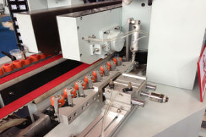 Straight Line Double Edging Glass Machine (FSM2025B) pictures & photos