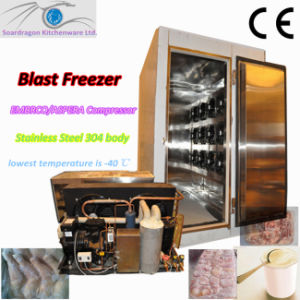 Blast Freezer for Meat and Ice Cream pictures & photos