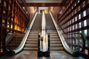 FUJIZY Escalator Lift pictures & photos