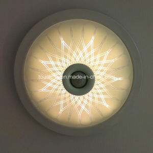 Sensor Ceiling Light, LED Sensor Ceiling Light, Outdoor LED Corridor Light