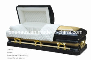 American Style Bronze Casket  (1354091) pictures & photos