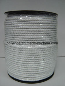 China Manufacturer Polyrope Polywire Polytape Rope pictures & photos