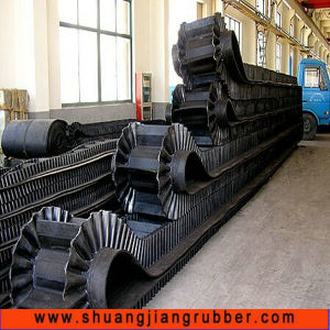 Long Warranty Large Angle Conveyor Belt pictures & photos