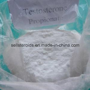 Propionato De Testosterona Esteroides Powder Testosterona Propionato pictures & photos
