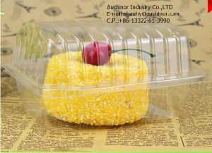 Multifunctional Transparent Food Blister Packing Box pictures & photos