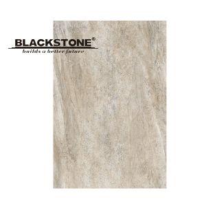 New Design Glazed Porcelain Floor Tile 600X900 (16990104) pictures & photos