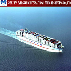 Sea Freight Door to Door From China to Portugal pictures & photos