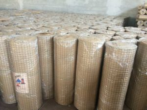 2*2 Galvanized Wire Mesh Melbourne with High Quality pictures & photos