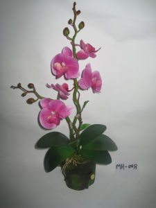 2012 New Design Hot Two Stems Artificial Orchid with Small Green Pot (MH-008)