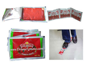 70 G Fiorini Brand Sachet Tomato Paste of 2016 New Crop Double Concentrated Tomato pictures & photos
