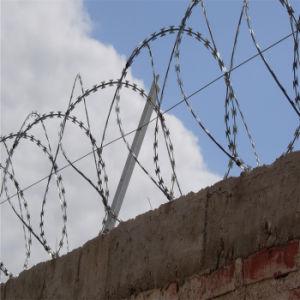 Galvanized Concertina Razor Wire Bto-22 pictures & photos