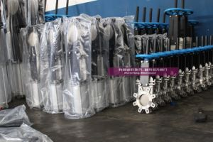 Cast Iron Knife Gate Valves pictures & photos