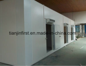 Frozen Cold Room for Meat and Fish/Cold Storage Room for Meat pictures & photos