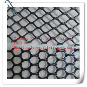 HDPE Plastic Mesh, Plastic Flat Netting, PP Plastic Mesh (China factory) pictures & photos