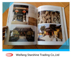 80-250GSM C2s Art Coated Paper pictures & photos