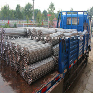 Stainless Steel Wire Mesh Conveyor Belt (High Food Grade) pictures & photos