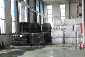 HDPE Geomembrane for Oil Spill and Lanfill Use pictures & photos