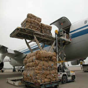 Lufthansa Airline Air Cargo Shipping Service to Guyana pictures & photos