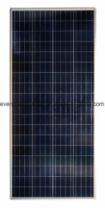 100W Solar Street Light All in One for Indian Pakistan Africa Market pictures & photos