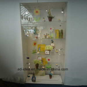 Acrylic Display Cabinet/Practical Acrylic Storage Display with Lock pictures & photos