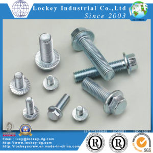 Hex Flange Head Bolt Hex Flange Head Screw pictures & photos