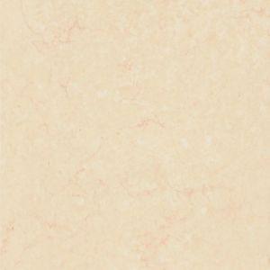 3D Inkjet Rustic Glazed Ceramic Floor Tile for Floor Tile 600X600mm pictures & photos