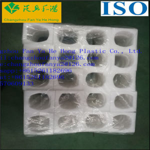 OEM EPE Foam Packaging Eggs Tray pictures & photos