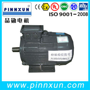 Y2 Series Three Phase Fan Motor pictures & photos