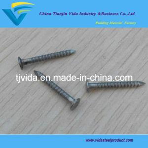 Galvanized Screw Nails pictures & photos
