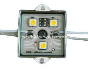 5050 SMD LED Module (PL-AM-S3W-12V-B)