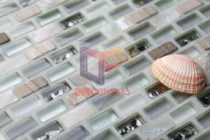 Crystal Mix Stone and Shell Wall Mosaic, Glass Mosaic (CFP109) pictures & photos