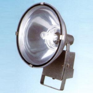 Flood Light Fixture (RH401)