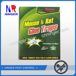 Strong Rat Glue Trap Sticky Mouse Glue Trap pictures & photos