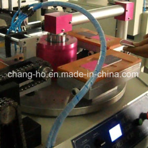 Nial File Flatbed Screen Printing Machine pictures & photos