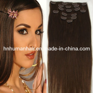 Remy Clips in Hair Extensions (HN-C-050)