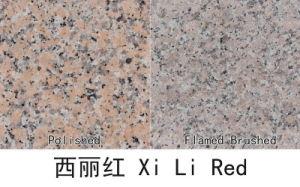Xili Granite Tiles