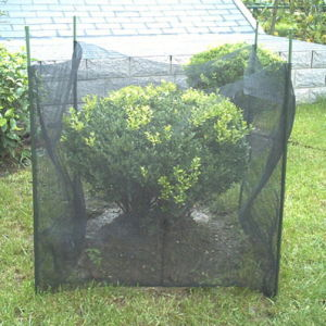 Tree Shelter Net / Tree Guard Net (Cif-Trw-01)
