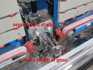 Insulating Glass Machine-Automatic Silicone Sealant Machine pictures & photos