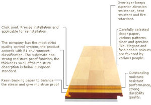 Laminated Flooring (Structure) pictures & photos