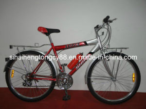 Cp Mountain Bicycle with Steel Carrier and Fenders MTB-058 pictures & photos