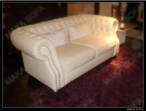 2011 New Modern Leather Sofa (HD-233)