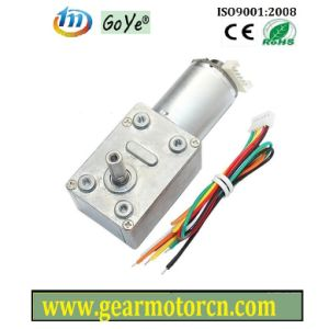 W. Encoder DC Motor (GYW-46WE2)
