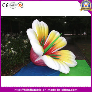 Inflatable Lighting Flower Wedding Decoration with LED Changing Light pictures & photos