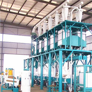 The Flour Mill for Wheat/Maize/Corn (6FTYF-50) pictures & photos
