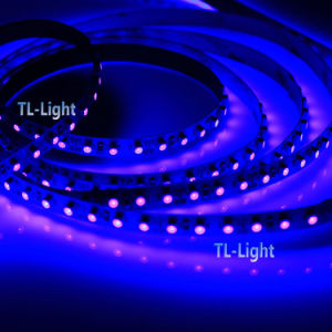UV 395-405nm DC12V 120SMD LED Strips pictures & photos