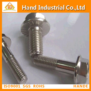 DIN6921 Stainless Steel Hex Flange Bolt pictures & photos