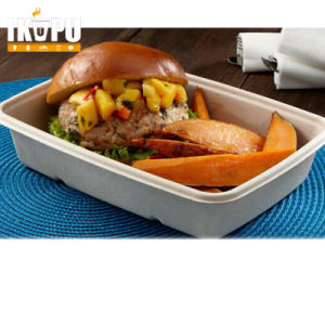 Lunch Box Takeaway Disposable Compartment Food Container pictures & photos