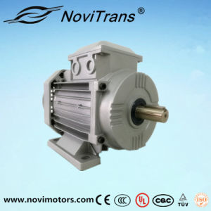 Ce Approved AC Permanent-Magnet Motor 750W, Ie4, 1500rpm pictures & photos